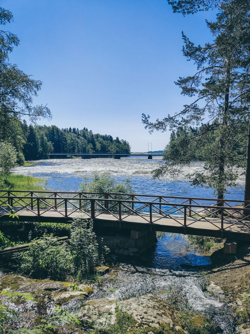 A wooden bridge going across water, surrounded by pine trees. Opens in lightbox.